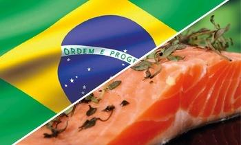 ASC destaca entrada de salmón chileno certificado a Brasil