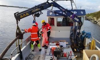 Kvitsøy Sjøtjenester vil transportere fem millioner rensefisk i år