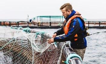 Ministers discuss salmon farming in Kirkwall