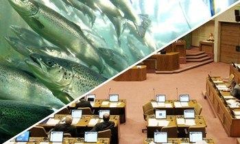 Jornada laboral de 40 horas fue ratificada en la Cámara de Diputados