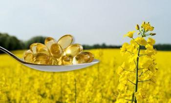 Cargill: Nueva alternativa permite reemplazar 100% del aceite de pescado en el alimento