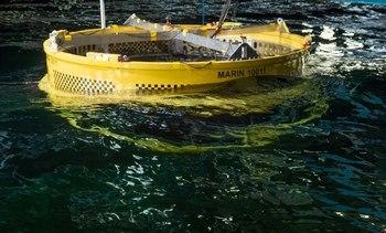 Fiskeridirektoratet omgjør avslag om utviklingstillatelse