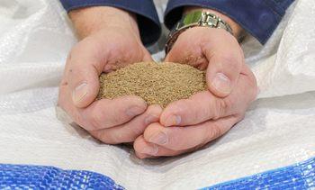 Nordlaks første som tester insektmel i kommersielt fôr
