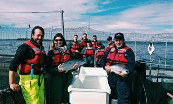 Marine Harvest recibe visitas diplomáticas de Canadá y Reino Unido