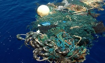ASC sets plastic disposal standards for fish farms