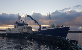 De første månedene som nytt brønnbåtselskap