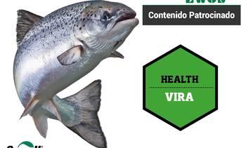 Un nuevo enfoque nutricional para combatir enfermedades virales