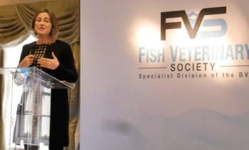 Scottish 2018 sea lice average is six-year low