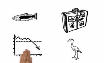 Økt kunnskap om hvordan laks formerer seg