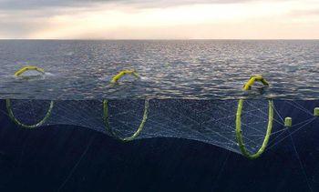 Fiskeridirektoratet gir tre nye avslag