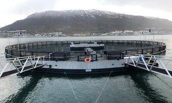 - Vil øke kunnskapen om havbruk blant Harstads befolkning og besøkende