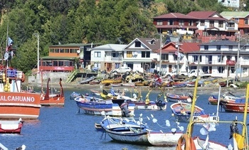 Vecinos continúan oponiéndose a proyecto salmonicultor en Caleta Tumbes
