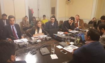 Gobierno saca participación ciudadana anticipada de reforma al SEA