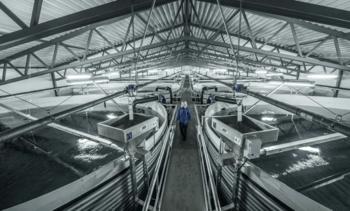 Russian salmon farmer to build smolt plant in Murmansk