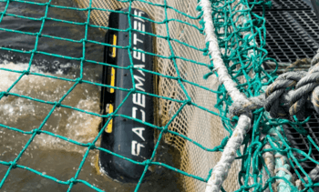 Mowi Irland kjøper norsk notvaskerobot