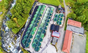 Los expositores de Aqua Nor que harán crecer la salmonicultura en tierra