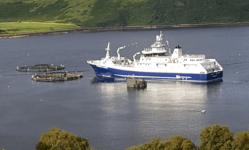 Mowi ships fish direct to Denmark to solve processing bottleneck