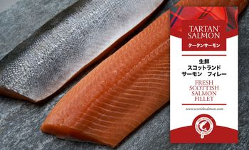 Well plaid! SSC launches Tartan Salmon in Japan