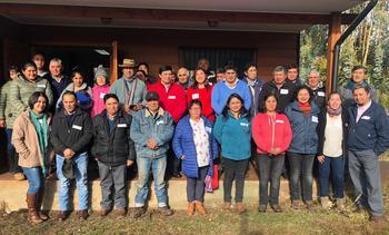 Araucanía: Cargill impulsa programa para productores de Lupino Aluprot