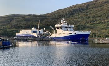 Traerán a Chile wellboat para tratamientos contra AGD y Caligus
