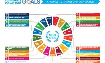 Aquaculture agency BIM named UN goals champion