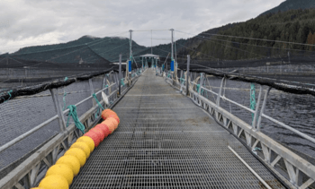 BC First Nations to oversee phase-out of up to 17 sites