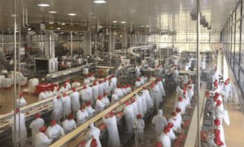 Verdens største foredlingsanlegg for laks