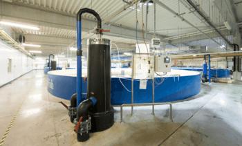 Pure Salmon Poland achieves ASC approval