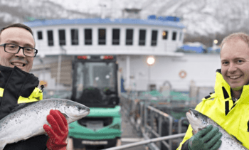 Scottish salmon 'most expensive to grow' in 2018