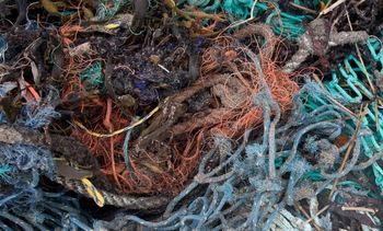 Storms creating fish farming 'ghost gear', says ASC