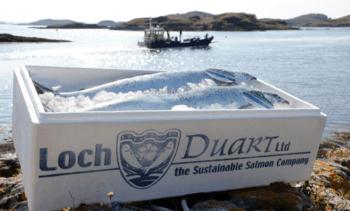 Loch Duart extends fraud-beating sampling to America