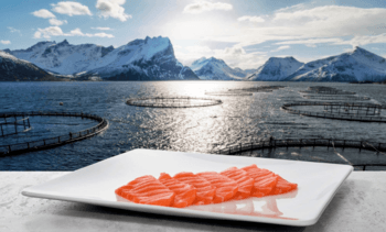Norway salmon exports worth 13% less in April