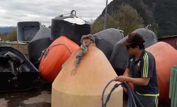 Pescadores artesanales se convierten en proveedores de la salmonicultura