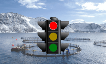Norway 'traffic light' verdict due in mid-March