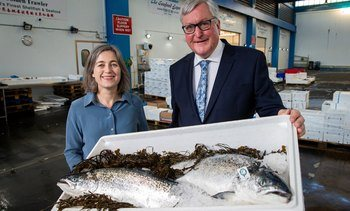 Scottish salmon exports set new value  record