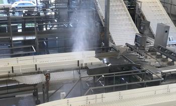 Emprendimiento optimiza hasta un 90% uso de agua en plantas salmonicultoras