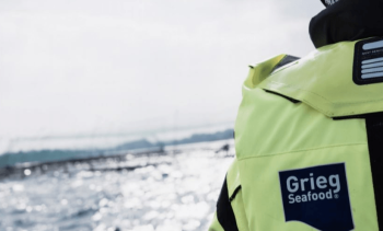Grieg Shetland survival rate up but revenues fall