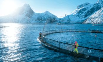Noruega alcanza menor consumo de medicamentos en más de una década