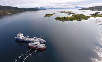 Apuesta sustentable: Reconvierten a electricidad flota de alimentación