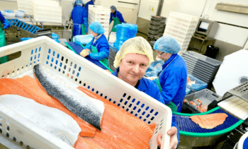 Salmon processor steps up financial support for self-isolating workers
