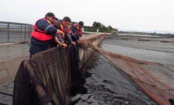 Así funciona el salvoconducto colectivo para los trabajadores del salmón