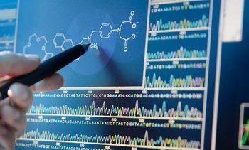 Descubren determinantes genómicos de la virulencia por Tenacibaculum dicentrarchi