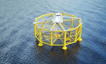 Ny skade på havmerden på Frohavet