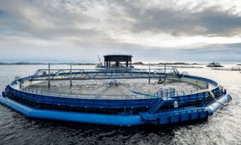 Lice skirt and more power for third-generation Aquatraz