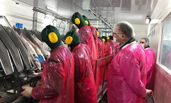 Gobierno explica a sindicatos salmonicultores Ley de Protección al Empleo