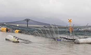 Salmones Camanchaca reporta mortalidad en centro afectado por aluviones