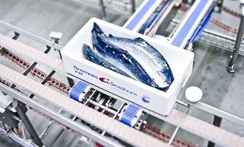 Oppløser Ocean Quality-samarbeidet