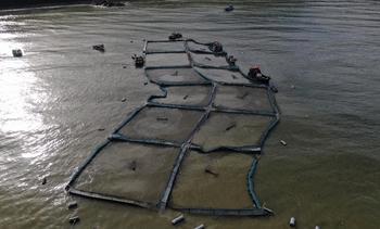 Pese a graves daños centro de Salmones Camanchaca no sufre escape masivo