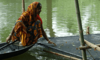 Aquaculture has improved food security, says UN