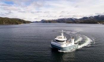 Embarcación ofrece servicio de noqueo y sangrado a bordo
